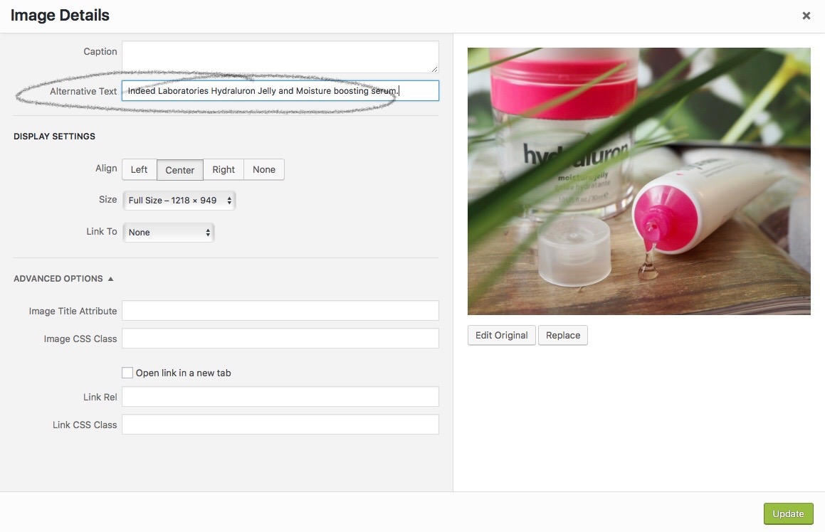alt text for images. Image shows where to add your tag