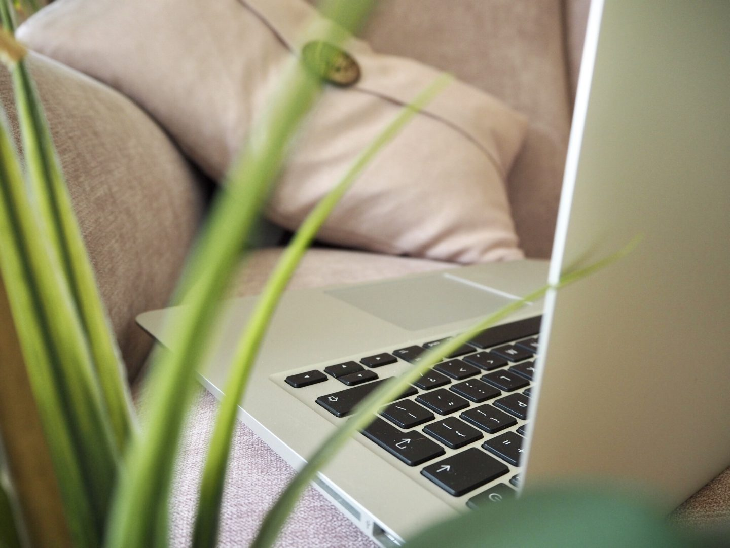 Why I Relaxed My Blogging Schedule