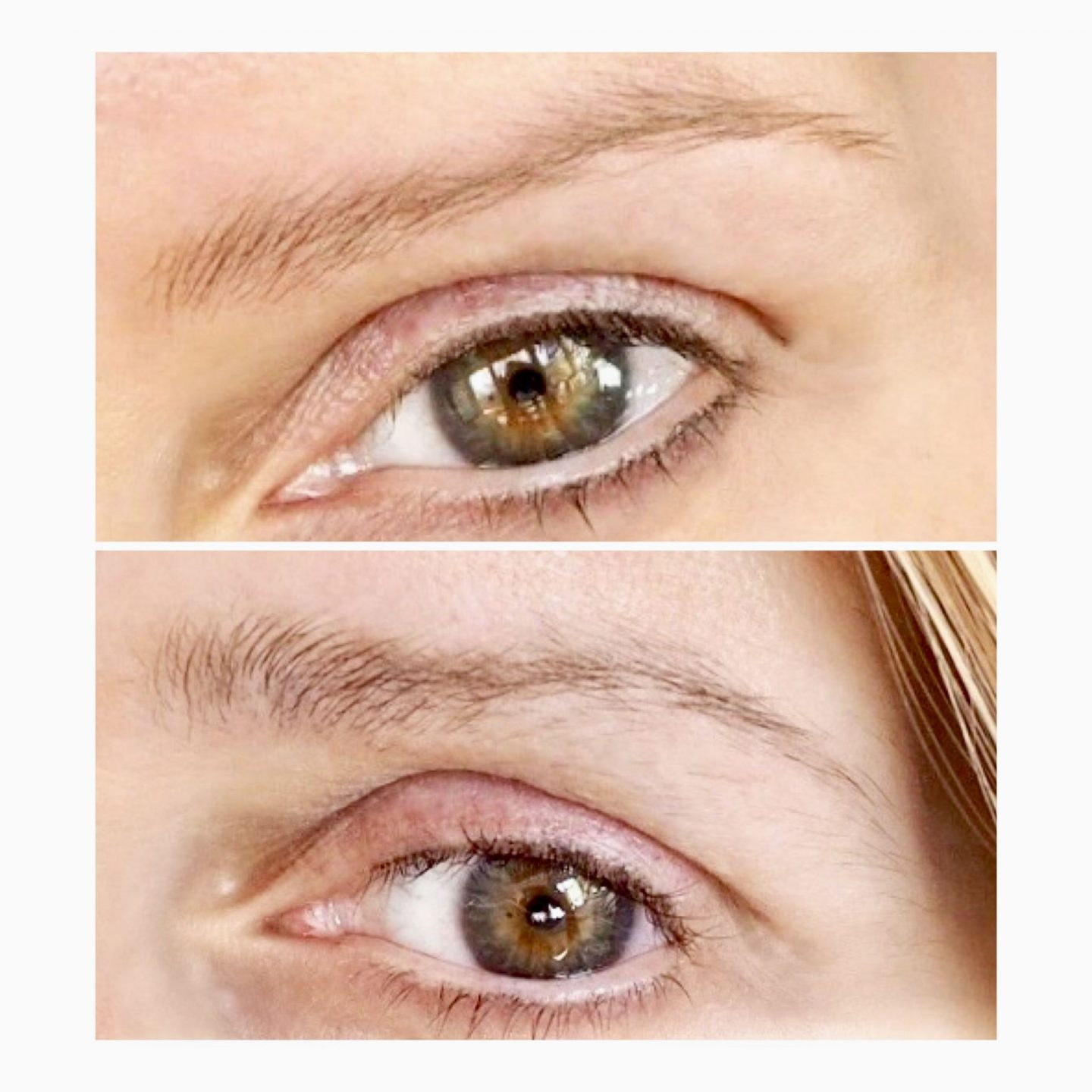 Before and after using Rapidbrow